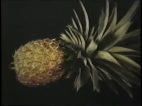 ECHO Tropical Fruits Video Series - Introduction To Tropical Fruit (Part 1 of 6)