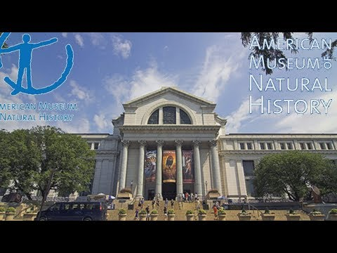 American Museum of Natural History in New York . Part  I
