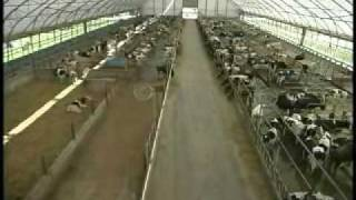 Cover-All of Wisconsin, LLC.  Abel Dairy Farms