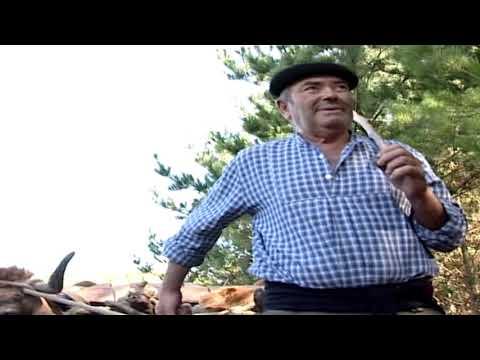 Rancho Folclórico do Grupo Alegre e Unido Bajouca-Leiria - Tacão E Bico