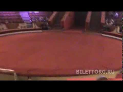 Цирк на Цветном Бульваре схема