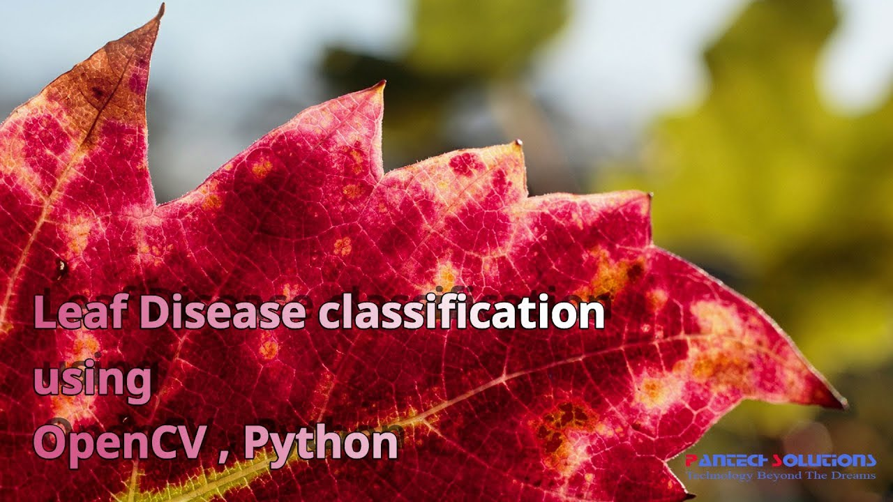 Automatic Leaf Disease Classification Using Hybrid Features