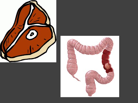 Red Meat Consumption and the Risk of Colon Cancer