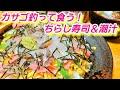【八景島でカサゴ釣り】 かさごのちらし寿司と潮汁の作り方『ひな祭りちらし寿司』☆…