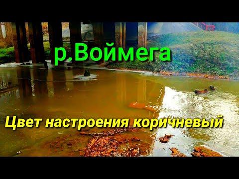 Река Воймега. Цвет Настроения коричневый.Рошаль.Шатура.Бакшеево.