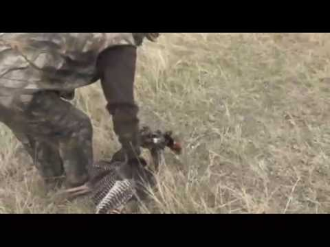 The Most Funny Turkey Hunting Video Ever..... Starring Cheap Charlie
