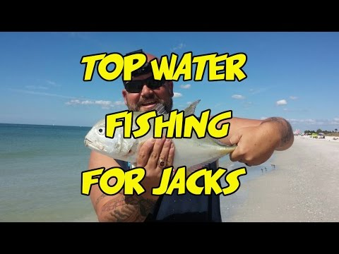 Topwater Surf Fishing For Crevalle Jack
