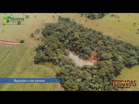 EXCELENTE OPORTUNIDADE! | FAZENDA SANTA LUZIA | TERRARAS IMÓVEIS RURAIS