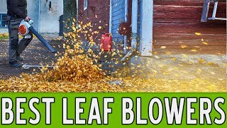 13 Best Leaf Blowers 2018