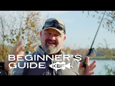 Beginner's Guide To Selecting Bass Lures