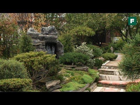 Сад Бонсай - Япония на дачном участке. Создан своими руками //FORUMHOUSE