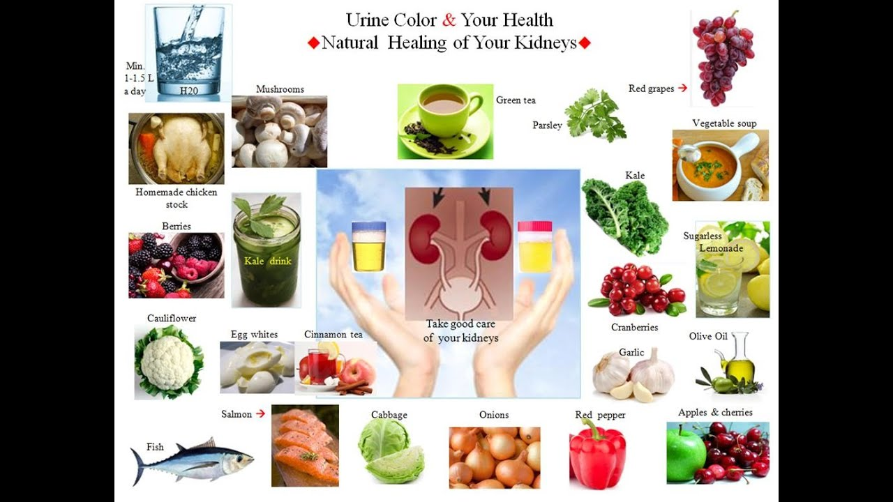 color of your urine natural remedies for kidneysu0027 health youtube