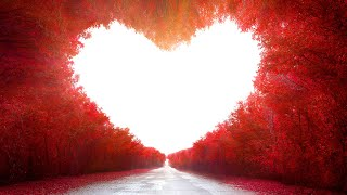 Self-Love - The Highest Teaching In The Universe