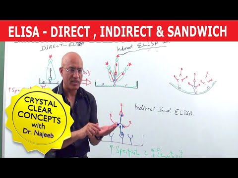 Elisa Test - Direct, Indirect & Sandwich