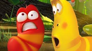 LARVA - LUCKY BUGS | Cartoon Movie | Cartoons For Children | Larva Cartoon | LARVA Official