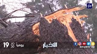 سرعة الرياح تتسبب بحالات اقتلاع أشجار وانقطاعات للتيار الكهربائي - (19-1-2018)