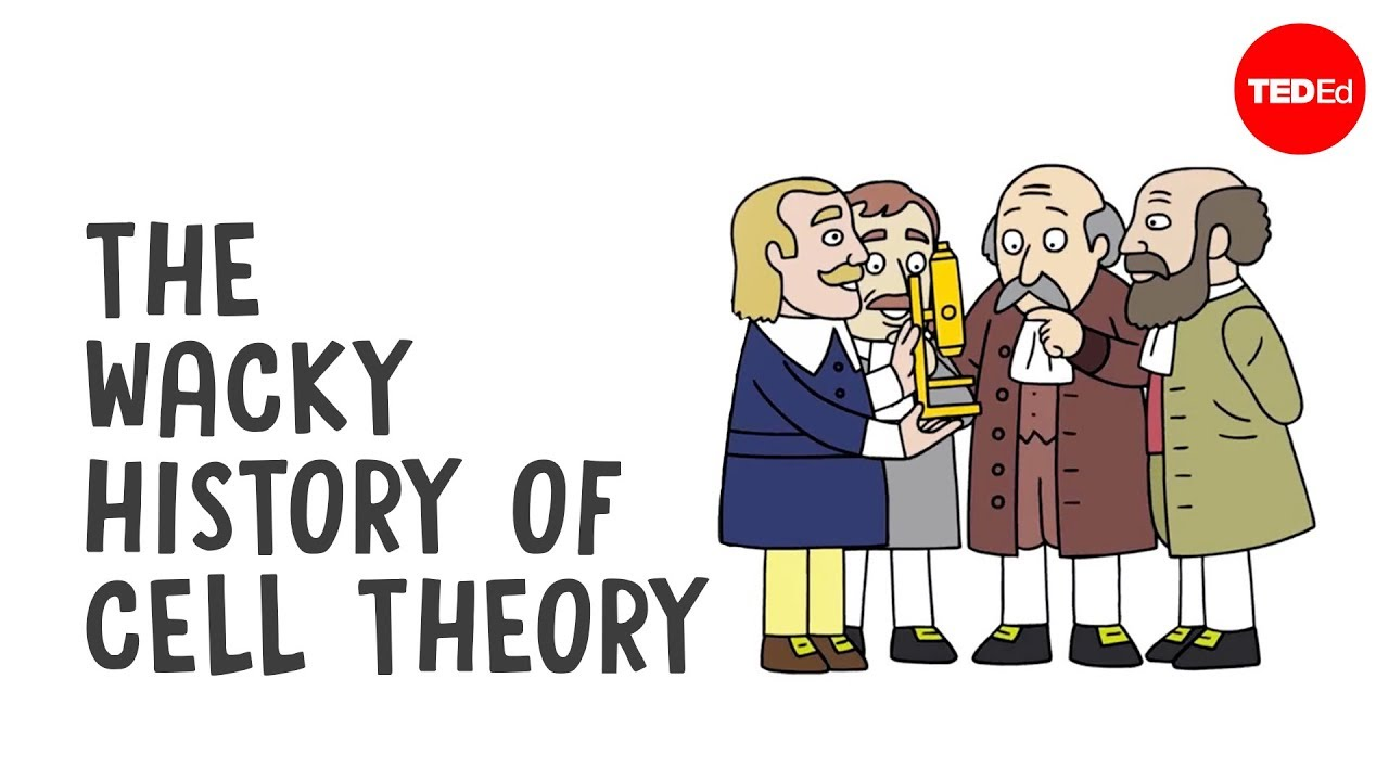 the wacky history of cell theory lauren royal woods [ 1280 x 720 Pixel ]