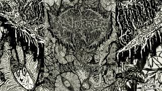 ▶ MINDEATER - Perpetual Rot-☠(TRACK PREMIERE 2020)☠