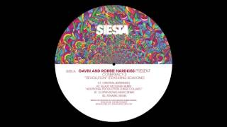 Hardkiss - Revolution (DJ Spun Rong Music Remix)
