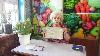 Сколько можно заработать с теплицы за 20тыс. руб., если использовать как рассадник. 3 месяца. 🌱🌱🌱