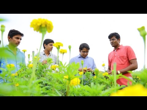 Using technology to improve the lives of organic farmers in India's heartland