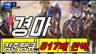 [경마]6월20일 서울5경주 518배적중!!!