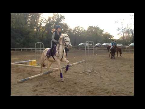 Sanawa et Lisa mini vidéo saut de puces