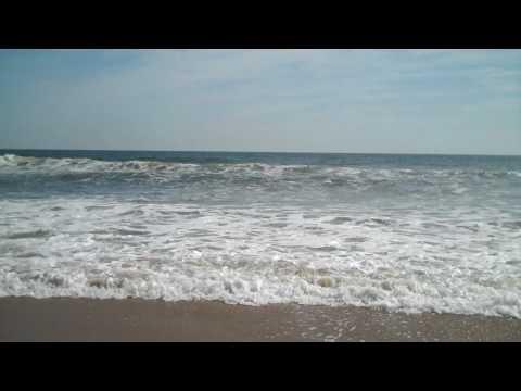 dam neck beach