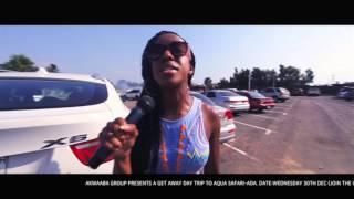 Akwaaba Day Trip to Ada 2015