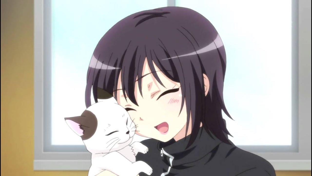 Boob Cat Gif