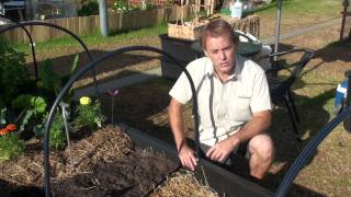 Compost Gardening Tips with EzyVegies
