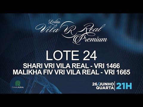LOTE 24 (VRI 1466/VRI 1665)