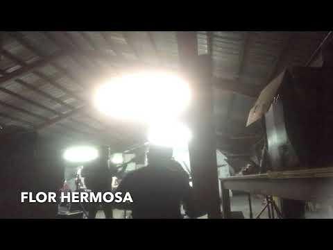 Flor Hermosa- Comando Bravo