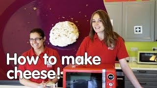 How to make cheese | Do Try This At Home | We The Curious