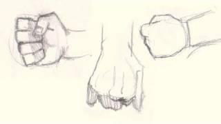How to draw hands and fists