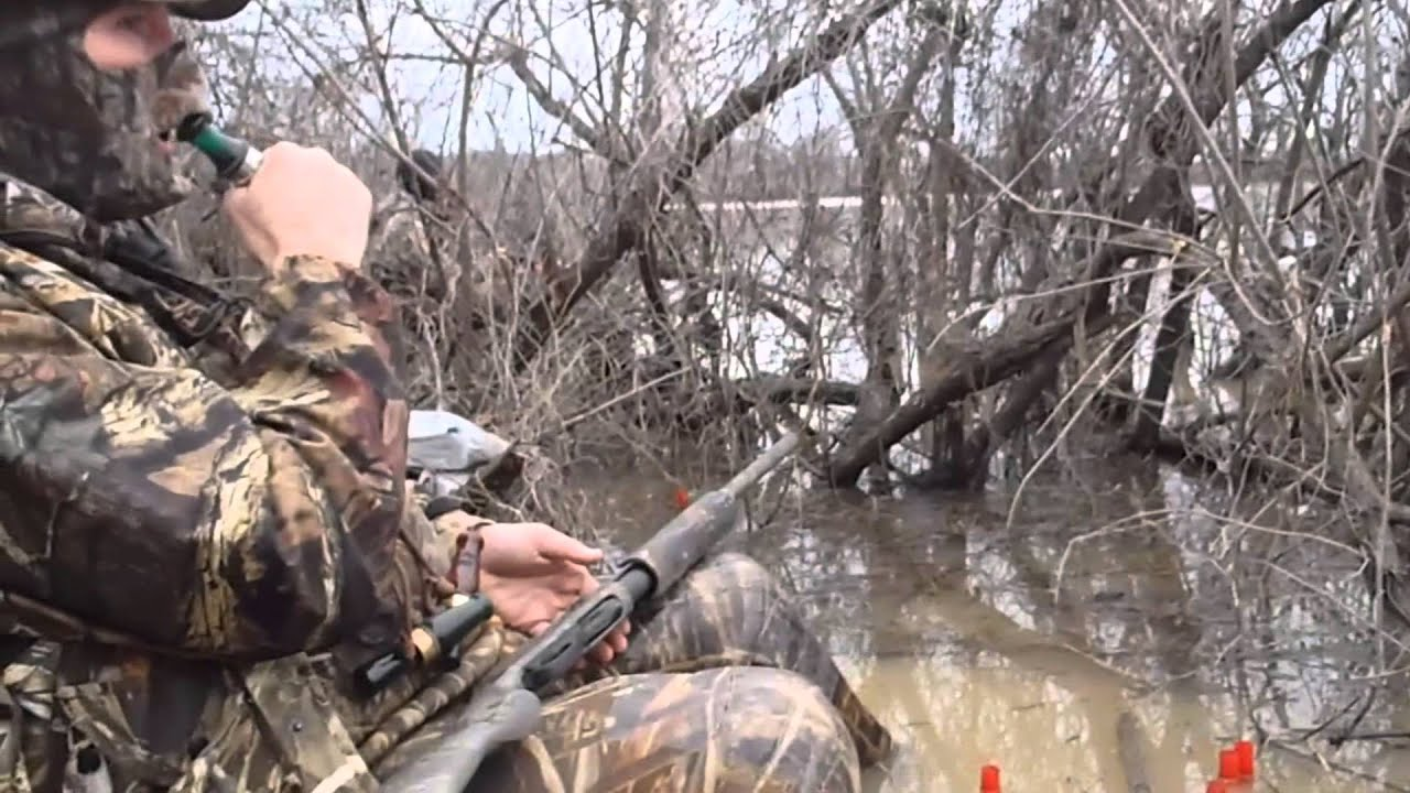 Duck hunting in mississippi youtube for Fishing license ms