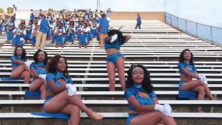 Mckinley High Pantherettes 2018-19| Rough Riders