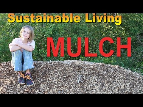 Sustainable Living: MULCH
