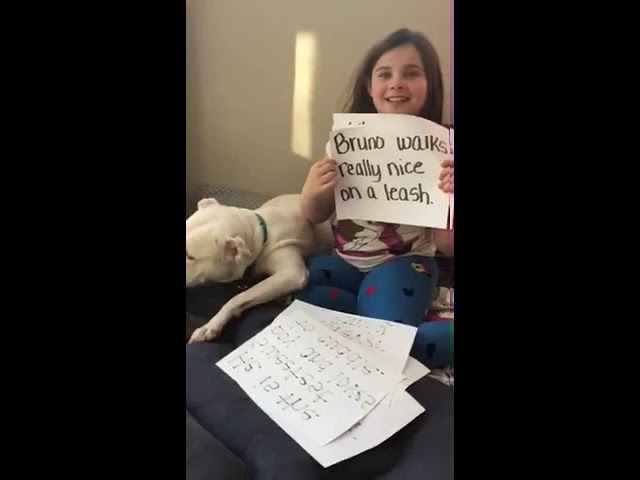 Sweet girl hopes to get dog adopted