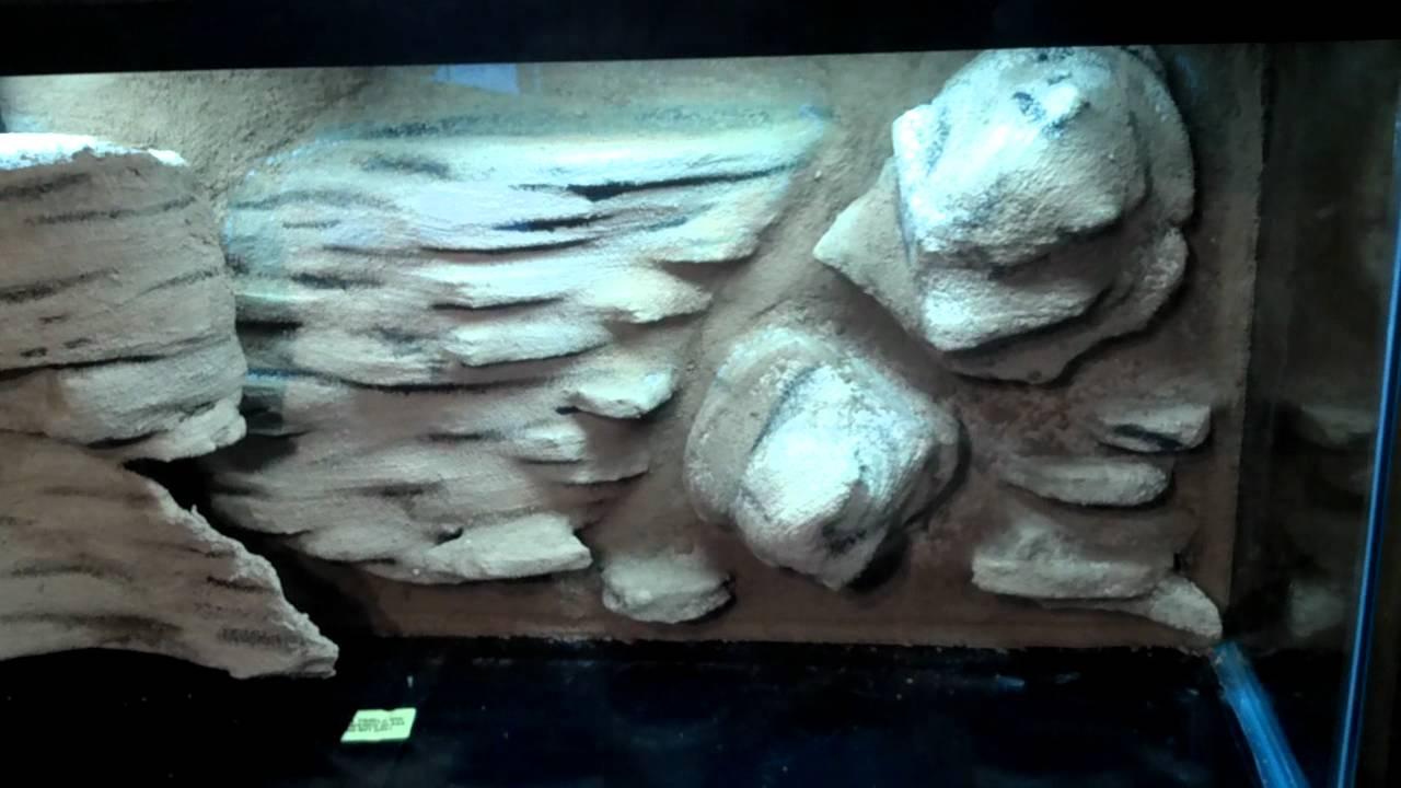 How To 3 Diy Aquarium 3d Background Cave Youtube