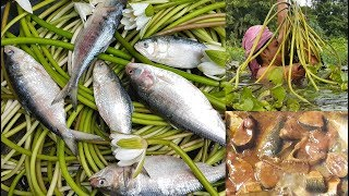 Water lilies & Hilsa/Ilish Curry Cooking / To Feed Children / Charity Food / Delicious Village Food