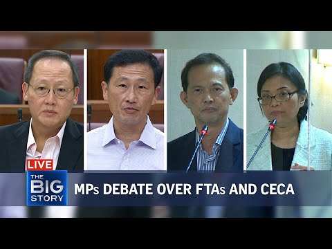 Ministers address 'false' statements on FTAs and Singapore-India Ceca | THE BIG STORY