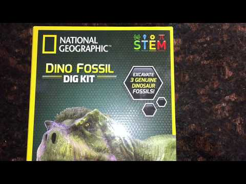 Dino Fossil Dig Kit - YouTube