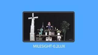 Milesight - Starlight Performansı