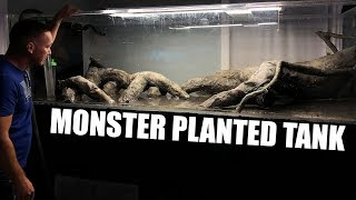 MONSTER PLANTED AQUARIUM!!!