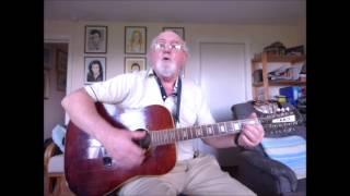 12-string Guitar: Gimme Hope, Jo