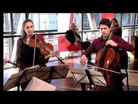 Navarra String Quartet - Pēteris Vasks/from: Stringquartet nr. 3, deel 3 Adagio