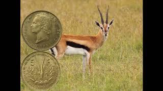 5 франков, Французская Западная Африка