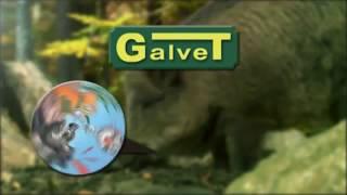 Galvet- Wildgranix
