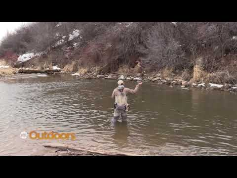 Fish Tech Fishing Tip: How To Catch Picky Fish
